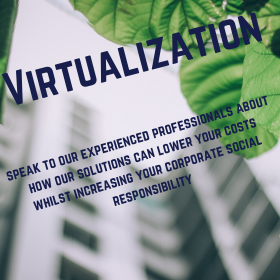 Virtualization: Experienced Professionals